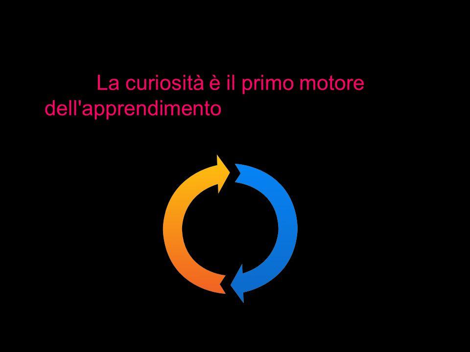 La curiosità è il primo motore dell apprendimento