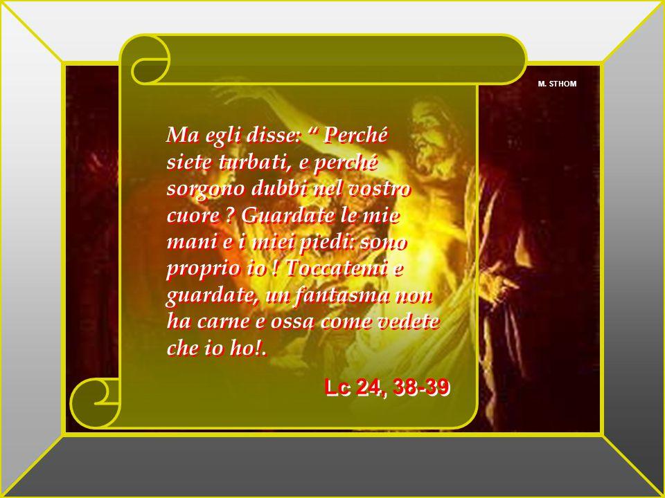 W. HOLE Allora entrò anche l'altro discepolo, che era giunto per primo al sepolcro, e vide e credette. Non avevano infatti ancora compreso la Scrittur
