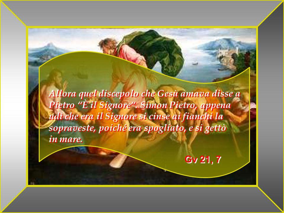 M. STHOM Ma egli disse: Perché siete turbati, e perché sorgono dubbi nel vostro cuore .