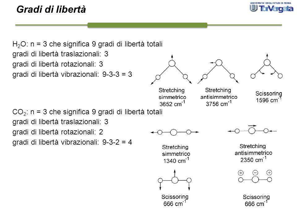 H 2 O: n = 3 che significa 9 gradi di libertà totali gradi di libertà traslazionali: 3 gradi di libertà rotazionali: 3 gradi di libertà vibrazionali: