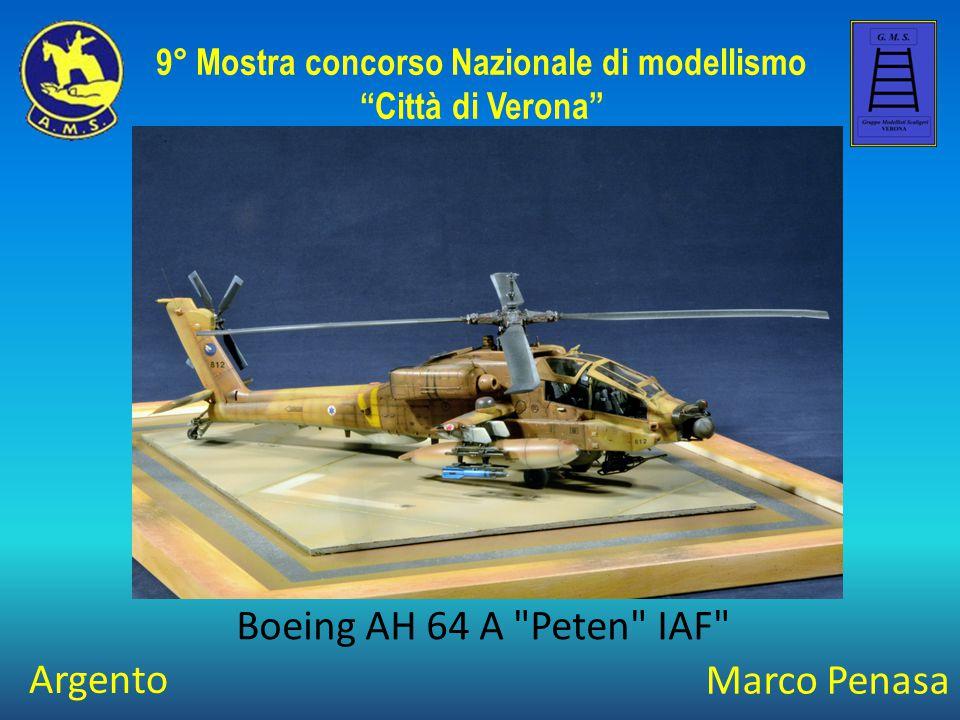 Stefano Forcella Boeing AH-64 A Peten 9° Mostra concorso Nazionale di modellismo Città di Verona Oro