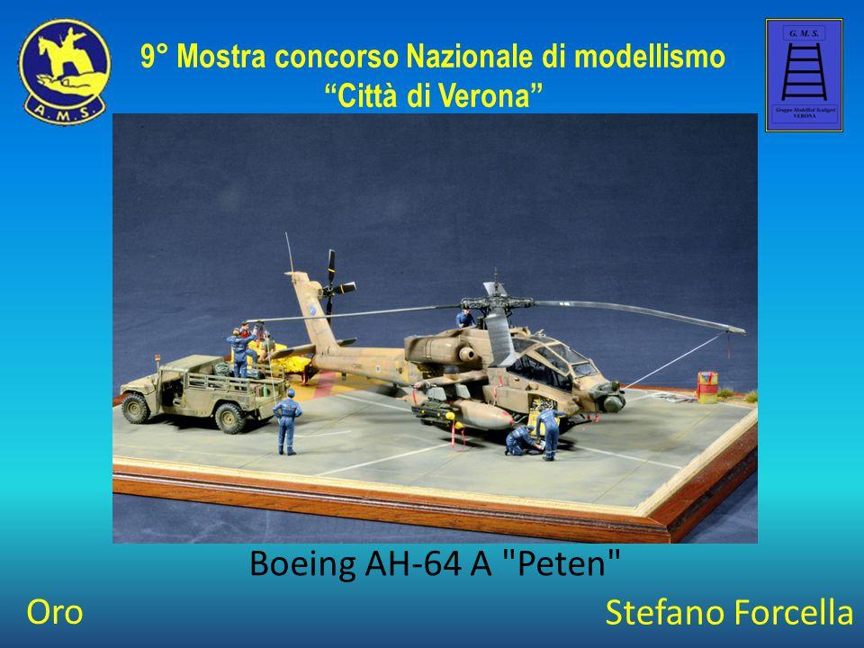 Mirko Paglia Flettner 282 9° Mostra concorso Nazionale di modellismo Città di Verona Best Of Class