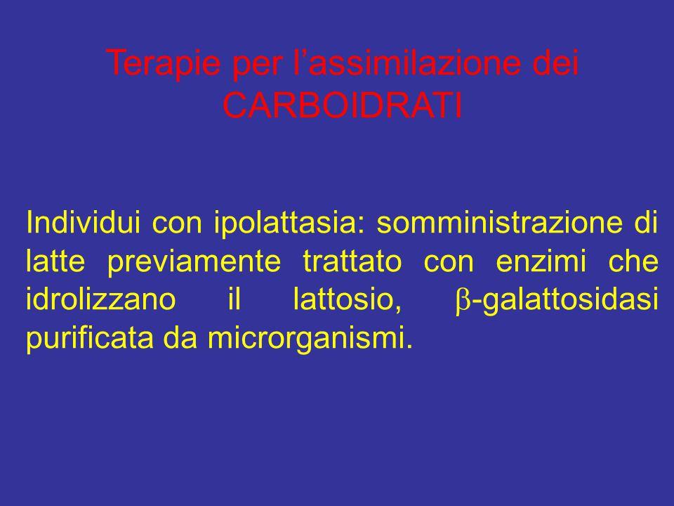 Terapie per l'assimilazione dei CARBOIDRATI Individui con ipolattasia: somministrazione di latte previamente trattato con enzimi che idrolizzano il la