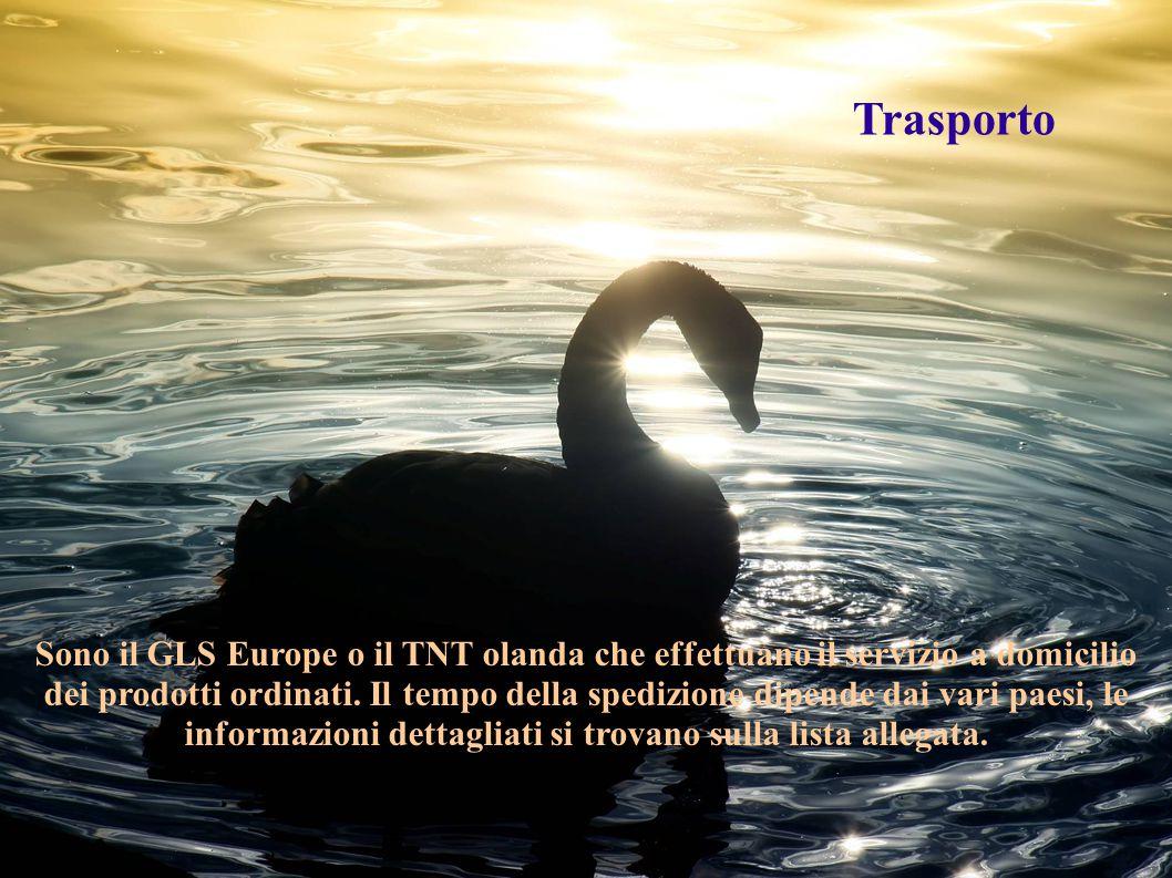 Sono il GLS Europe o il TNT olanda che effettuano il servizio a domicilio dei prodotti ordinati. Il tempo della spedizione dipende dai vari paesi, le