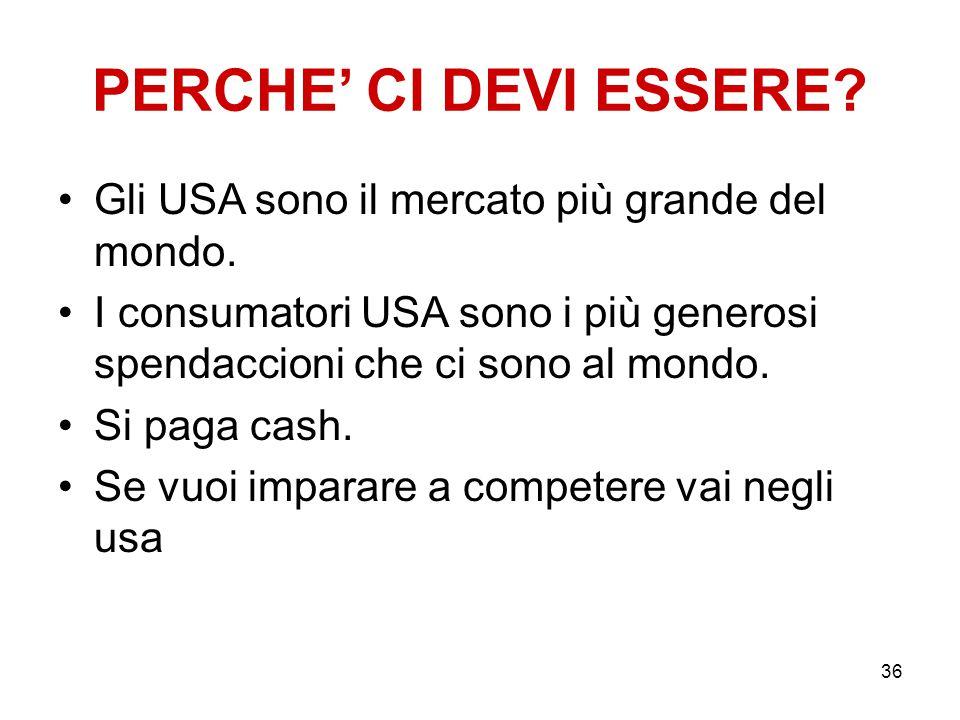 PERCHE' CI DEVI ESSERE? Gli USA sono il mercato più grande del mondo. I consumatori USA sono i più generosi spendaccioni che ci sono al mondo. Si paga