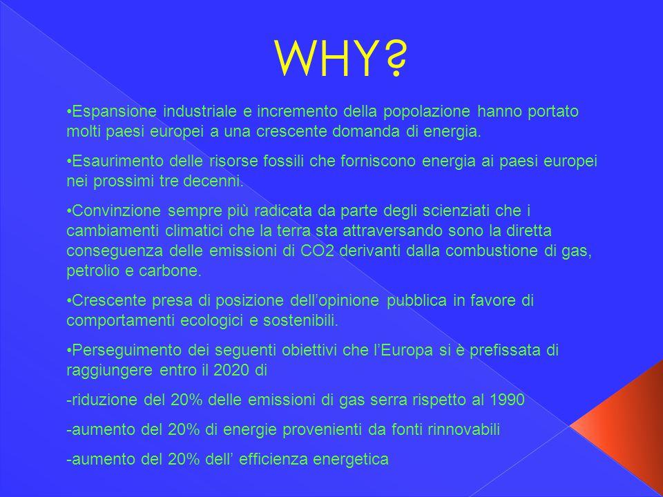 WHY? Espansione industriale e incremento della popolazione hanno portato molti paesi europei a una crescente domanda di energia. Esaurimento delle ris