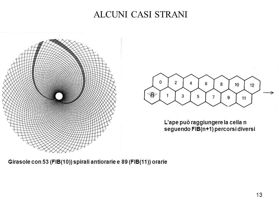 13 ALCUNI CASI STRANI L'ape può raggiungere la cella n seguendo FIB(n+1) percorsi diversi Girasole con 53 (FIB(10)) spirali antiorarie e 89 (FIB(11))