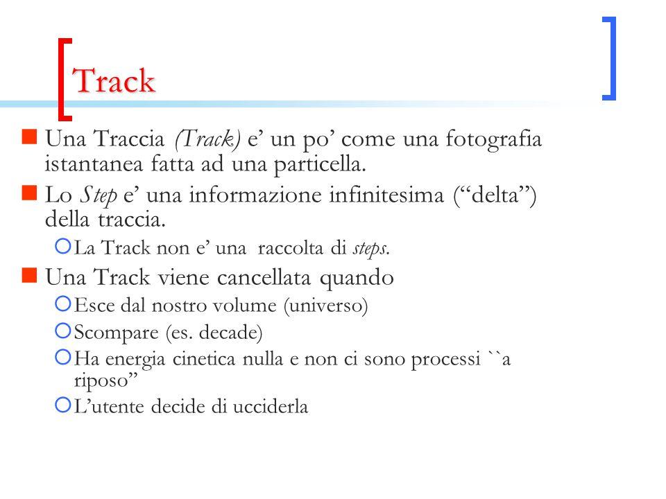 """Track Una Traccia (Track) e' un po' come una fotografia istantanea fatta ad una particella. Lo Step e' una informazione infinitesima (""""delta"""") della t"""
