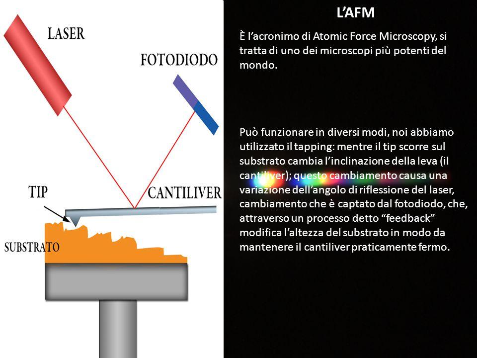 L'AFM È l'acronimo di Atomic Force Microscopy, si tratta di uno dei microscopi più potenti del mondo. Può funzionare in diversi modi, noi abbiamo util