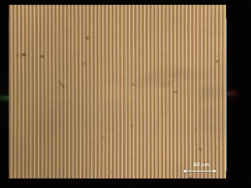 Set-up olografico Laser Beam Splitter Beam Expander Sample 40  m