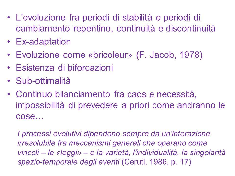 L'evoluzione fra periodi di stabilità e periodi di cambiamento repentino, continuità e discontinuità Ex-adaptation Evoluzione come «bricoleur» (F. Jac