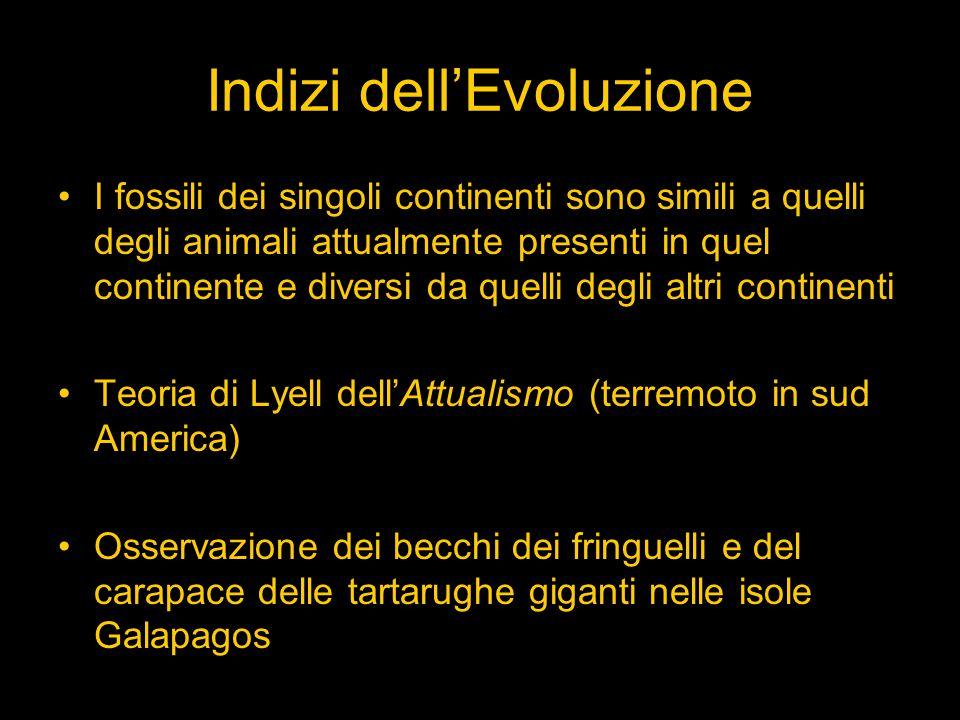 Indizi dell'Evoluzione I fossili dei singoli continenti sono simili a quelli degli animali attualmente presenti in quel continente e diversi da quelli degli altri continenti Teoria di Lyell dell'Attualismo (terremoto in sud America) Osservazione dei becchi dei fringuelli e del carapace delle tartarughe giganti nelle isole Galapagos