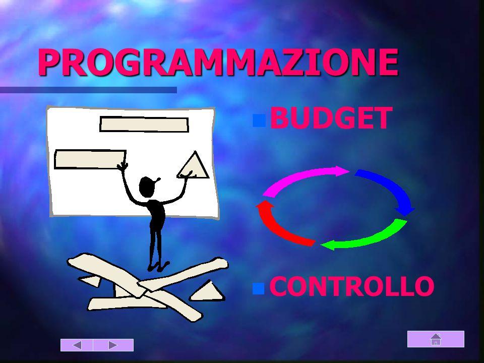 PIANIFICAZIONE PROGRAMMAZIONE DECISIONI GESTIONE CONTROLLO IL CONTROLLO DI GESTIONE (2)