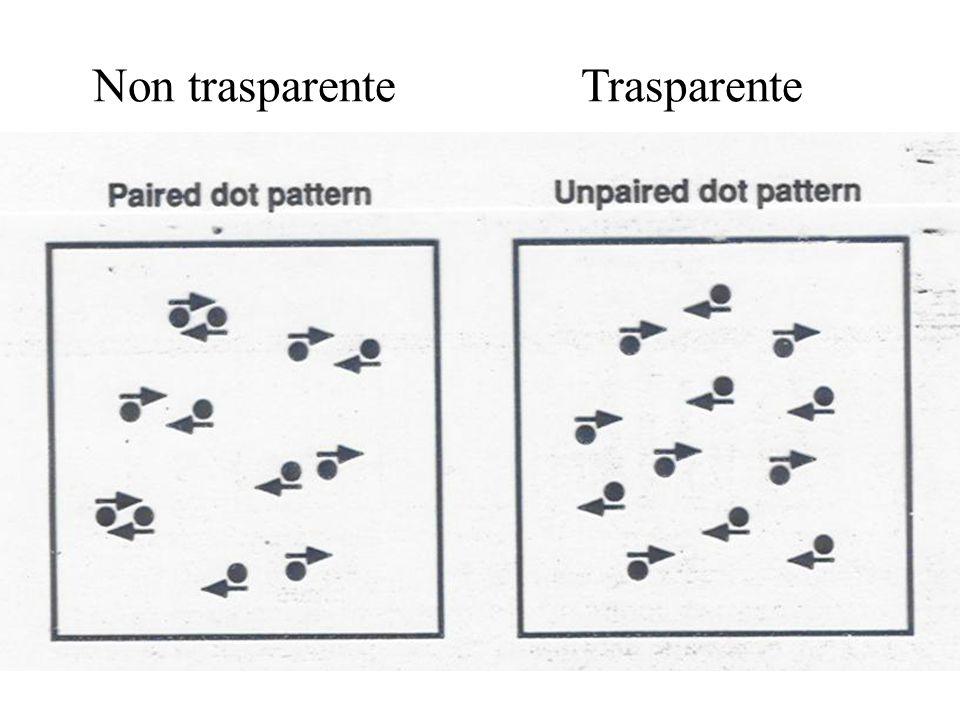 Non trasparenteTrasparente