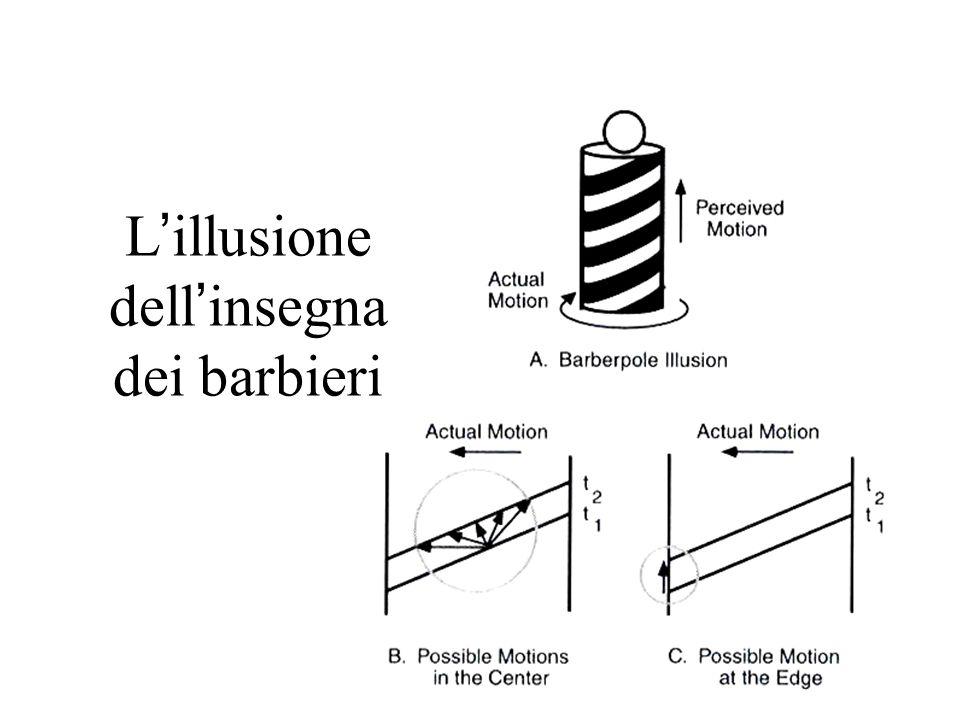 L ' illusione dell ' insegna dei barbieri