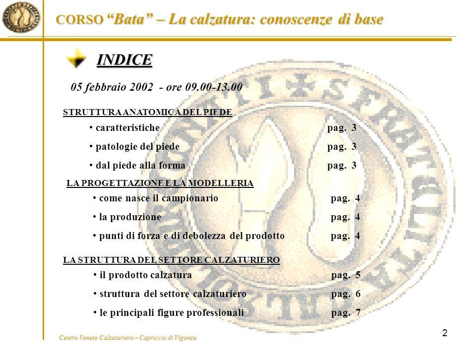 """Centro Veneto Calzaturiero – Capriccio di Vigonza CORSO """"Bata"""" – La calzatura: conoscenze di base 2 INDICE 05 febbraio 2002 - ore 09.00-13.00 il prodo"""