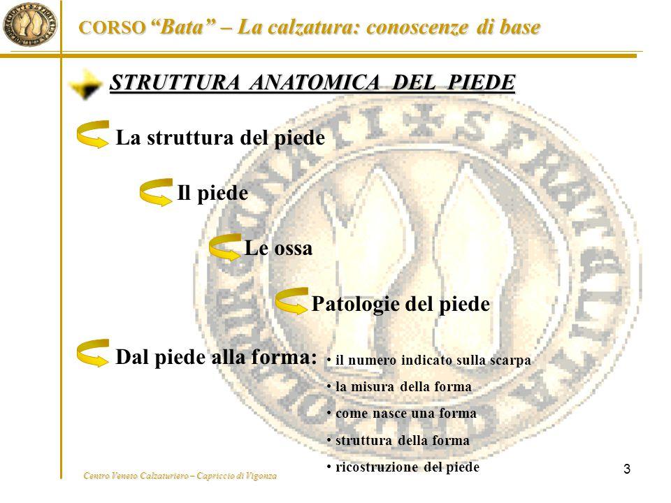 """Centro Veneto Calzaturiero – Capriccio di Vigonza CORSO """"Bata"""" – La calzatura: conoscenze di base 3 STRUTTURA ANATOMICA DEL PIEDE La struttura del pie"""