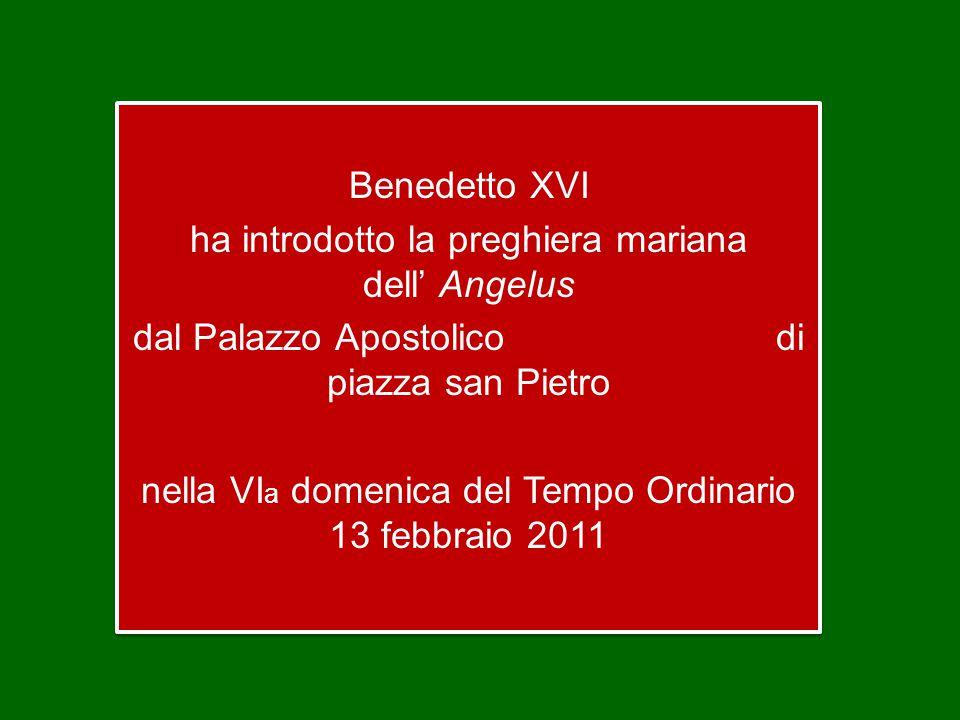 Benedetto XVI ha introdotto la preghiera mariana dell' Angelus dal Palazzo Apostolico di piazza san Pietro nella VI a domenica del Tempo Ordinario 13 febbraio 2011 Benedetto XVI ha introdotto la preghiera mariana dell' Angelus dal Palazzo Apostolico di piazza san Pietro nella VI a domenica del Tempo Ordinario 13 febbraio 2011