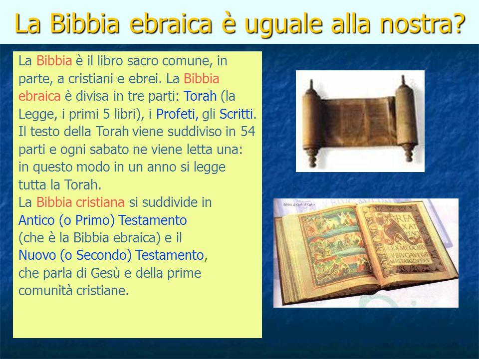 La Bibbia ebraica è uguale alla nostra? La Bibbia è il libro sacro comune, in parte, a cristiani e ebrei. La Bibbia ebraica è divisa in tre parti: Tor