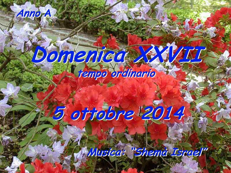 Anno A Domenica XXVII tempo ordinario Domenica XXVII tempo ordinario 5 ottobre 2014 Musica: Shemà Israel