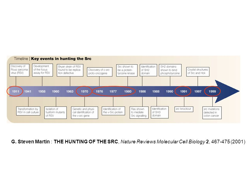 G. Steven Martin : THE HUNTING OF THE SRC, Nature Reviews Molecular Cell Biology 2, 467-475 (2001)
