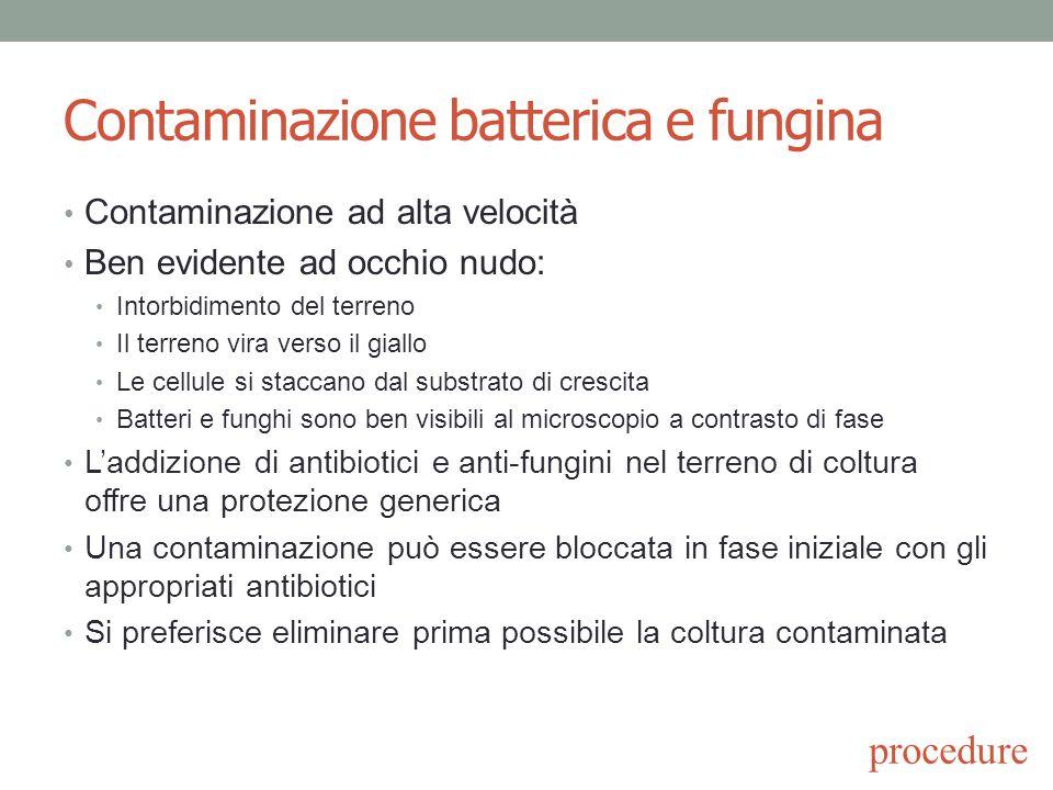 Contaminazione batterica e fungina Contaminazione ad alta velocità Ben evidente ad occhio nudo: Intorbidimento del terreno Il terreno vira verso il gi