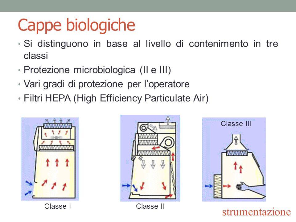 Cappe biologiche Cappa a flusso orizzontale Protezione microbiologica per le colture Nessuna protezione per l'operatore Filtri HEPA in entrata strumentazione