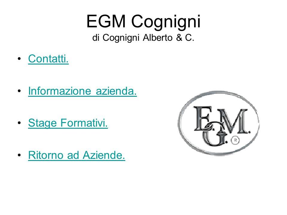 EGM Cognigni di Cognigni Alberto & C. Contatti. Informazione azienda.
