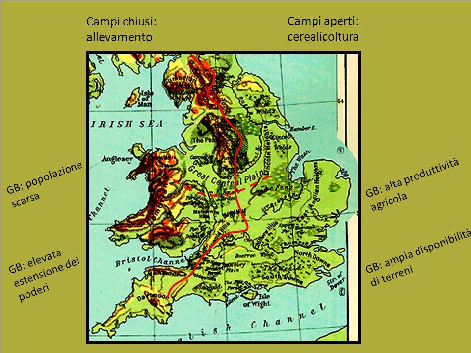 Campi chiusi: allevamento Campi aperti: cerealicoltura GB: popolazione scarsa GB: alta produttività agricola GB: elevata estensione dei poderi GB: amp