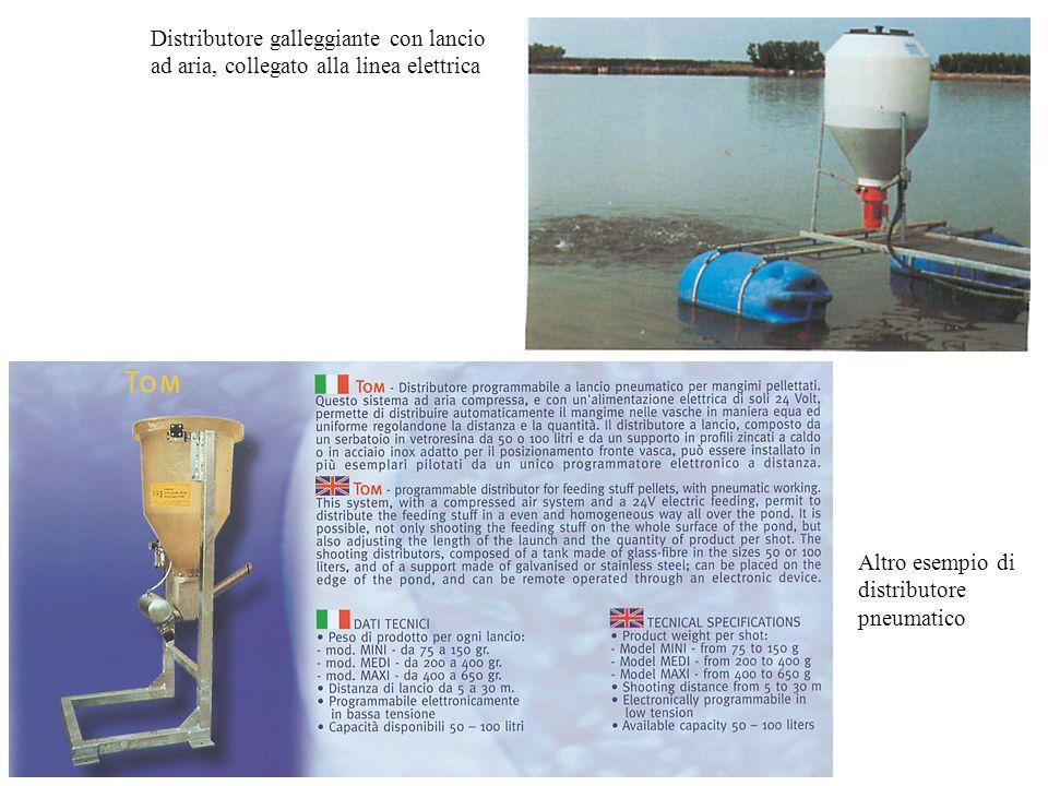 Distributore galleggiante con lancio ad aria, collegato alla linea elettrica Altro esempio di distributore pneumatico