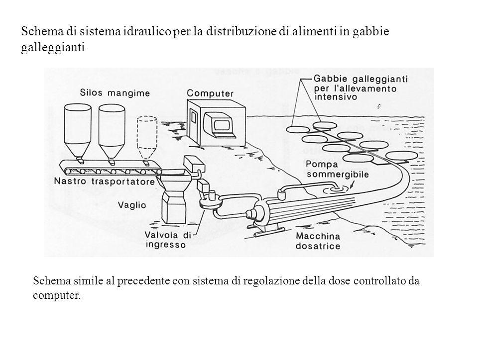 Schema di sistema idraulico per la distribuzione di alimenti in gabbie galleggianti Schema simile al precedente con sistema di regolazione della dose