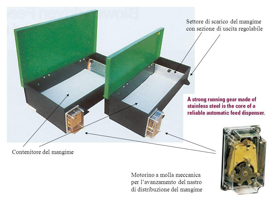 Motorino a molla meccanica per l'avanzamento del nastro di distribuzione del mangime Contenitore del mangime Settore di scarico del mangime con sezion