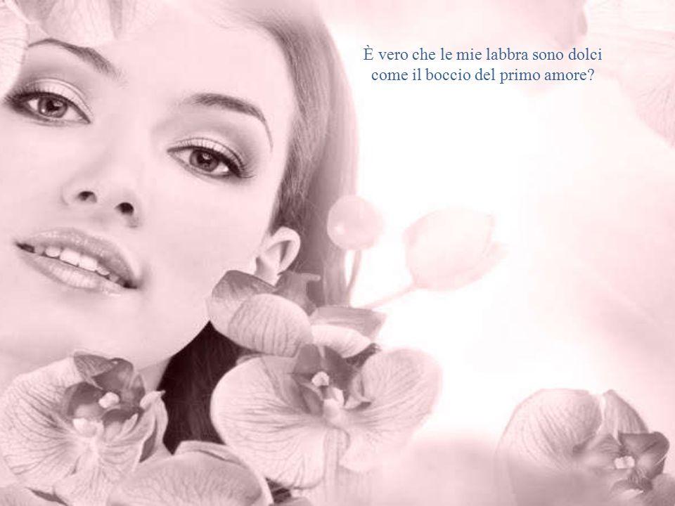 È vero che le mie labbra sono dolci come il boccio del primo amore?