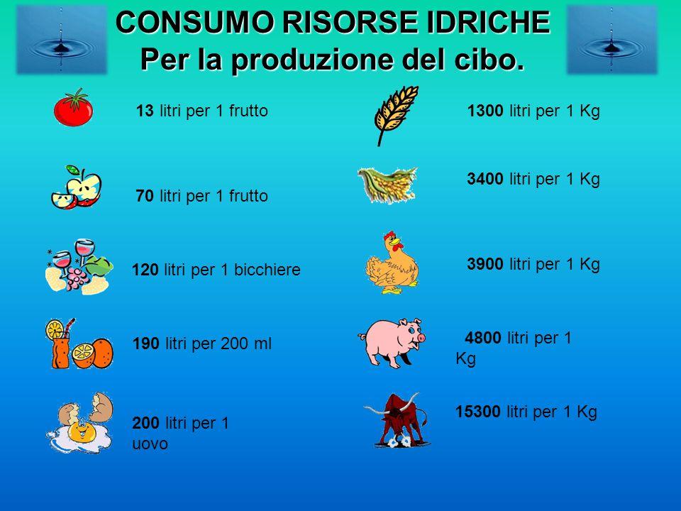 70 litri per 1 frutto 13 litri per 1 frutto 120 litri per 1 bicchiere 190 litri per 200 ml 200 litri per 1 uovo 1300 litri per 1 Kg 15300 litri per 1