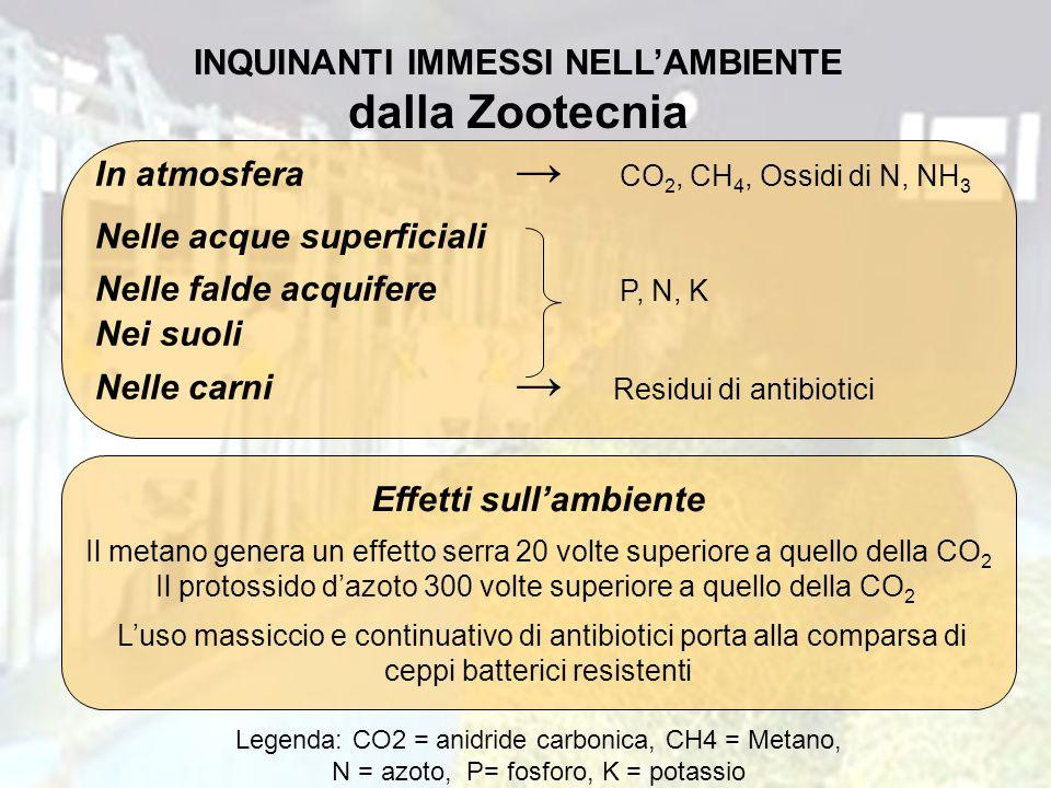 INQUINANTI IMMESSI NELL'AMBIENTE dalla Zootecnia In atmosfera → CO 2, CH 4, Ossidi di N, NH 3 Nelle acque superficiali Nelle falde acquifere P, N, K N