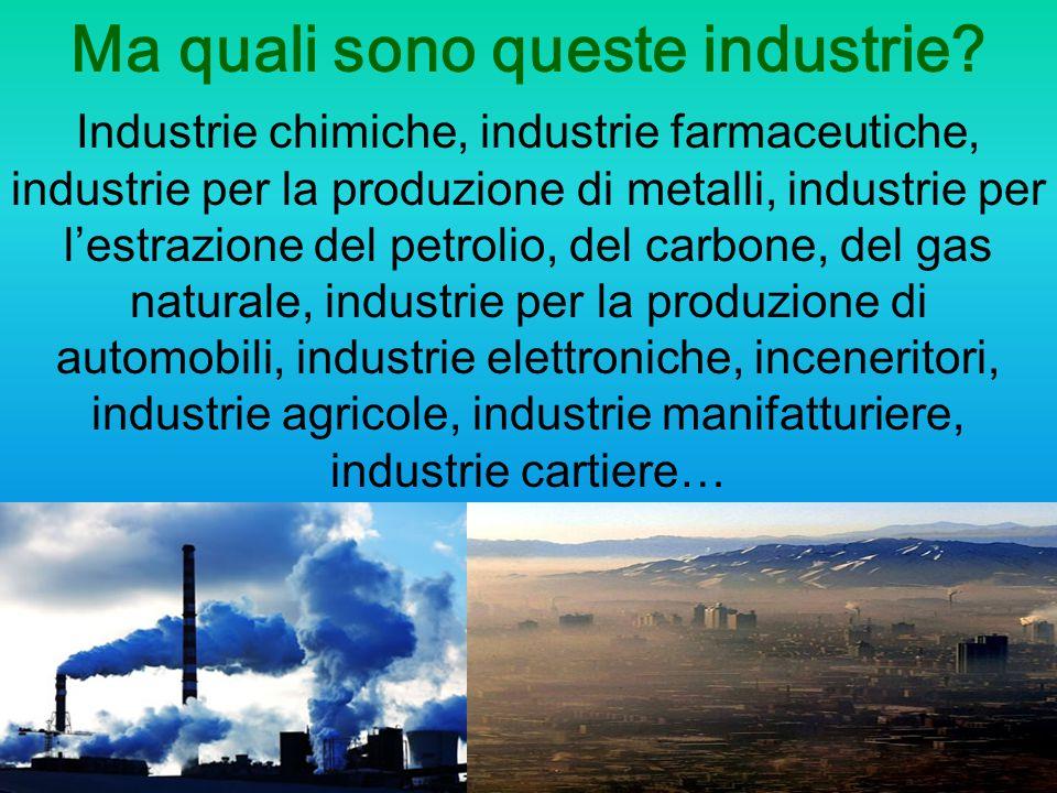Ma quali sono queste industrie? Industrie chimiche, industrie farmaceutiche, industrie per la produzione di metalli, industrie per l'estrazione del pe