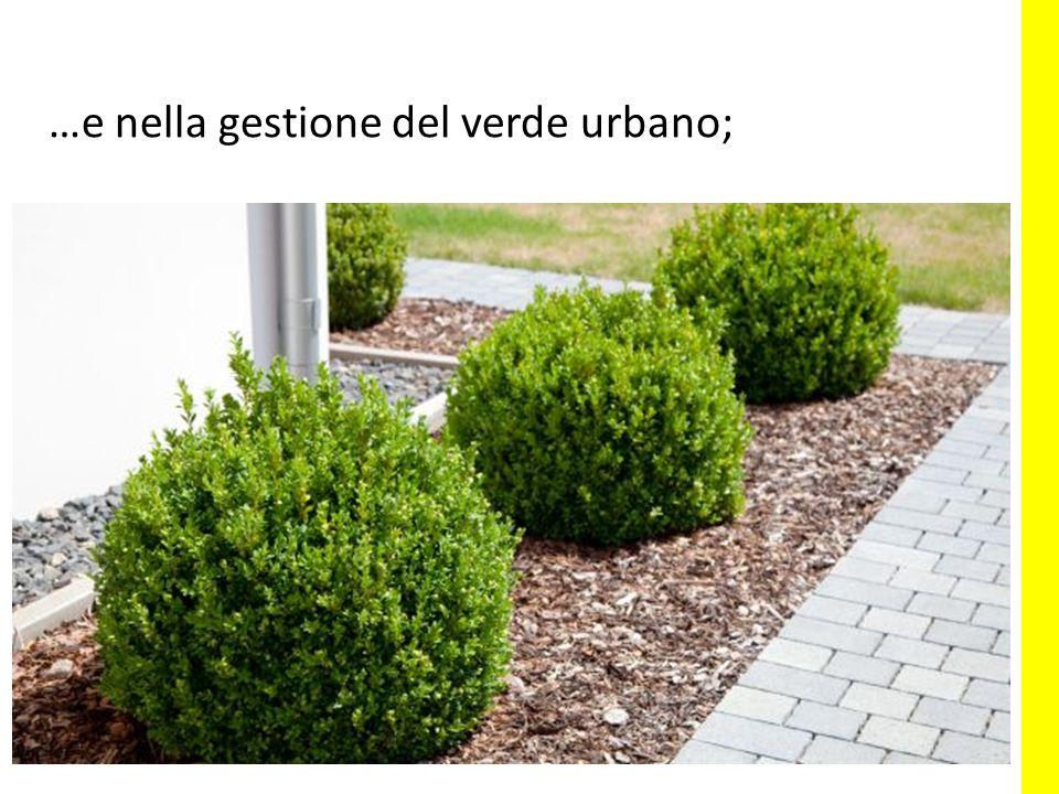 …e nella gestione del verde urbano;