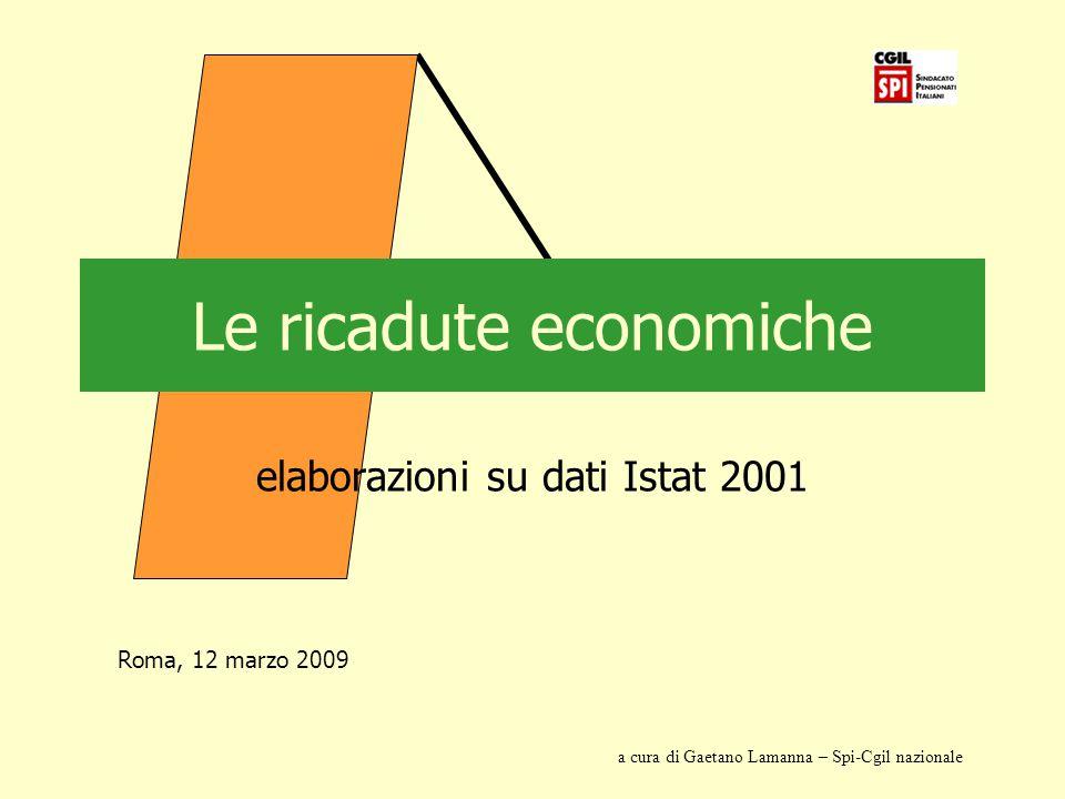 Le ricadute economiche elaborazioni su dati Istat 2001 Roma, 12 marzo 2009 a cura di Gaetano Lamanna – Spi-Cgil nazionale