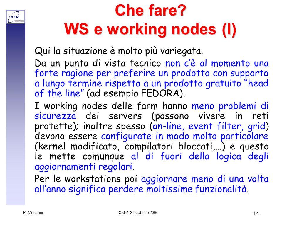 CSN1 2 Febbraio 2004 P. Morettini 14 Che fare.