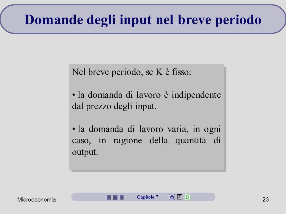 Microeconomia23 Domande degli input nel breve periodo Nel breve periodo, se K è fisso: la domanda di lavoro è indipendente dal prezzo degli input. la