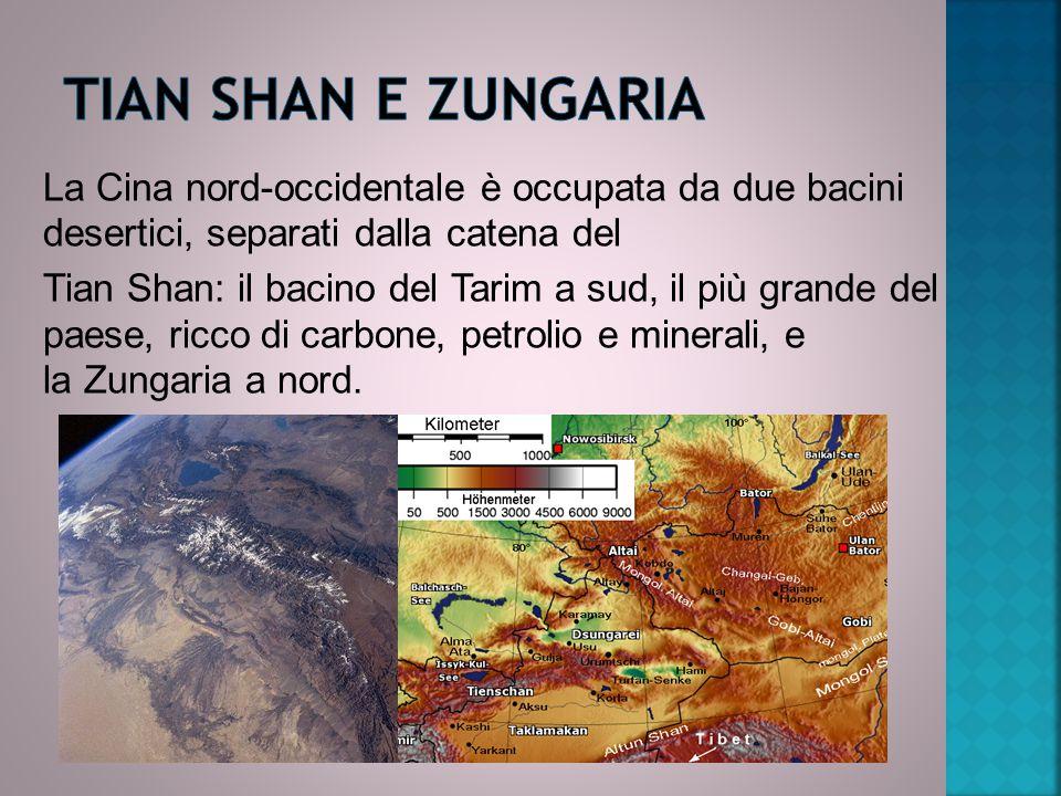 La Cina nord-occidentale è occupata da due bacini desertici, separati dalla catena del Tian Shan: il bacino del Tarim a sud, il più grande del paese, ricco di carbone, petrolio e minerali, e la Zungaria a nord.