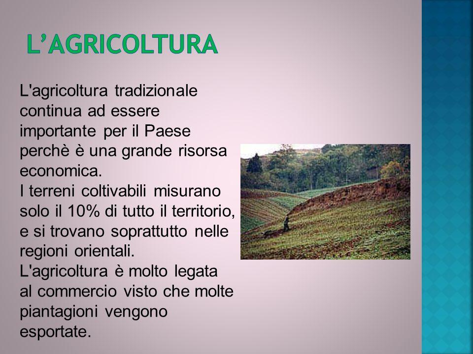 L'agricoltura tradizionale continua ad essere importante per il Paese perchè è una grande risorsa economica. I terreni coltivabili misurano solo il 10