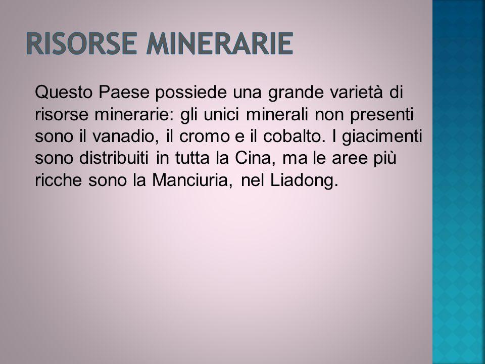 Questo Paese possiede una grande varietà di risorse minerarie: gli unici minerali non presenti sono il vanadio, il cromo e il cobalto.