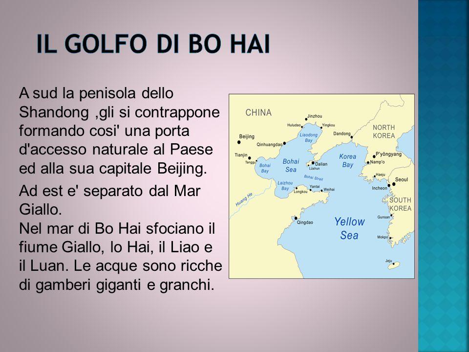 A sud la penisola dello Shandong,gli si contrappone formando cosi' una porta d'accesso naturale al Paese ed alla sua capitale Beijing. Ad est e' separ