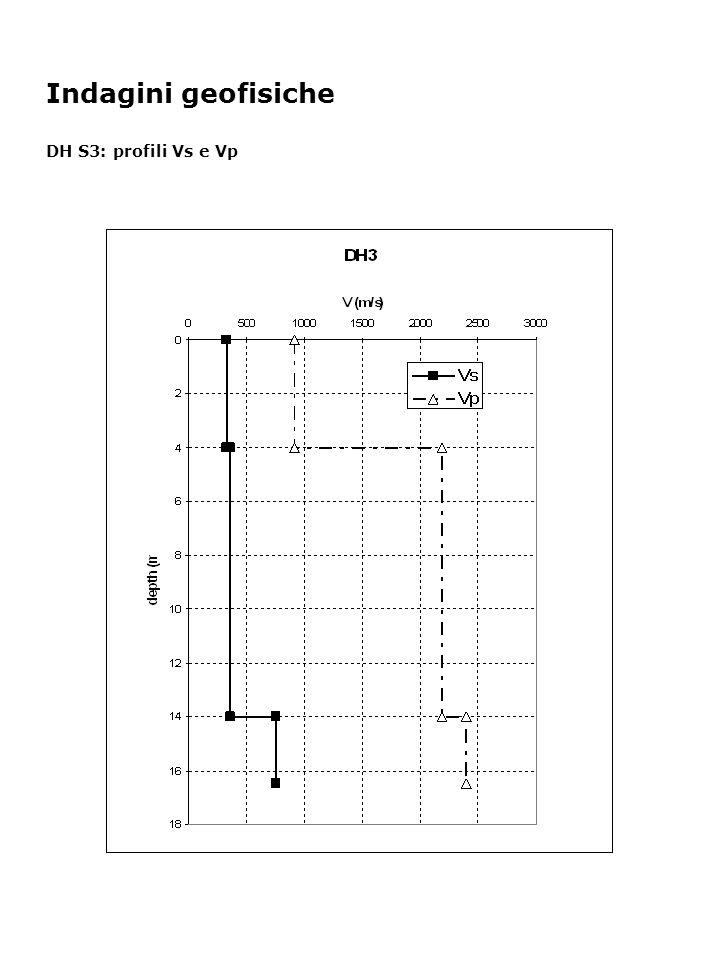 Indagini geofisiche DH S3: profili Vs e Vp
