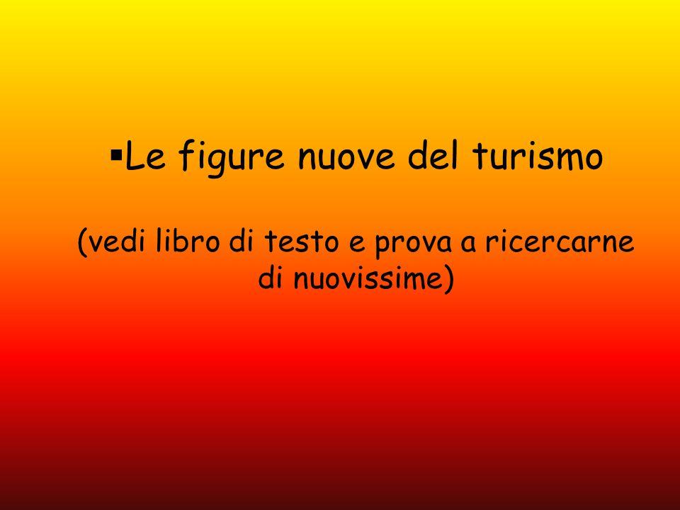  Le figure nuove del turismo (vedi libro di testo e prova a ricercarne di nuovissime)