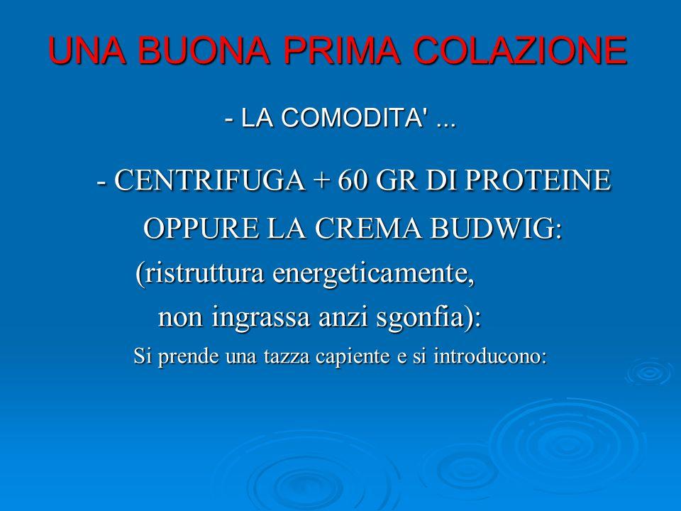 UNA BUONA PRIMA COLAZIONE - LA COMODITA'... - CENTRIFUGA + 60 GR DI PROTEINE - CENTRIFUGA + 60 GR DI PROTEINE OPPURE LA CREMA BUDWIG: OPPURE LA CREMA