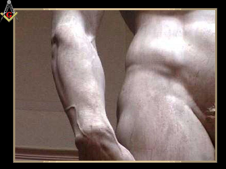 """IL DAVID Galleria dell'Accademia Firenze """"i particolari"""""""