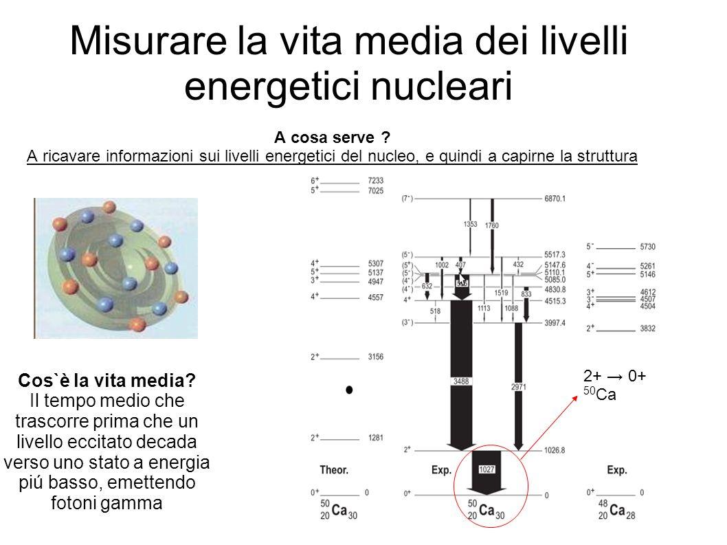 Misurare la vita media dei livelli energetici nucleari A cosa serve ? A ricavare informazioni sui livelli energetici del nucleo, e quindi a capirne la