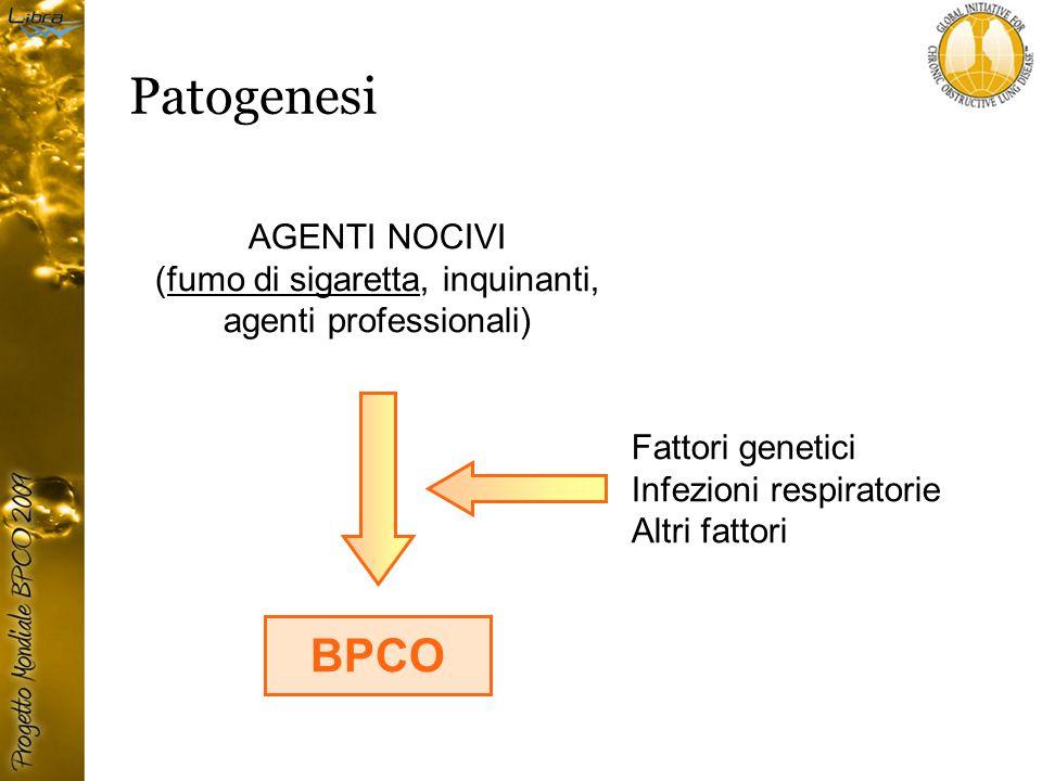 AGENTI NOCIVI (fumo di sigaretta, inquinanti, agenti professionali) BPCO Fattori genetici Infezioni respiratorie Altri fattori Patogenesi